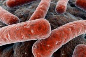 Tratamiento para la tuberculosis