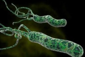 Tratamiento para helicobacter pylori